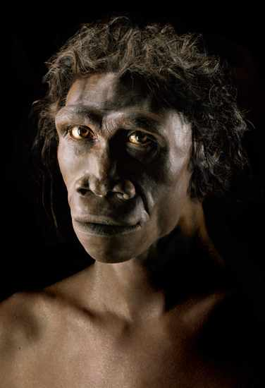 20070308222559-homo-erectus.jpg