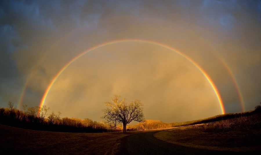 20070224113915-rainbow.jpg