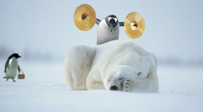 20071228171529-pinguinooso.jpg