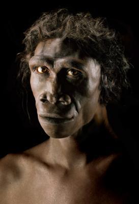 20081007185603-homo-erectus.jpg