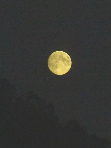 Moonish Moon 2 by JoseAngelGarciaLanda