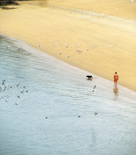 Dog-walking Man by JoseAngelGarciaLanda