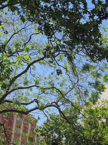 Sentado cerca de casa by JoseAngelGarciaLanda