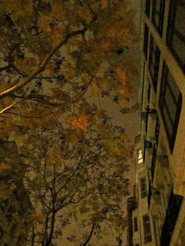 Nunca pensé que viviría en 2012 by JoseAngelGarciaLanda