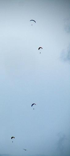 Voladores by JoseAngelGarciaLanda
