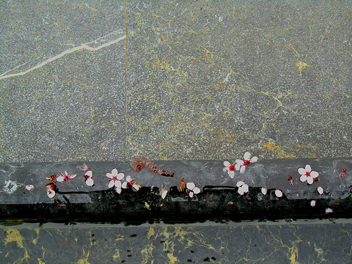 El mundo flotante by JoseAngelGarciaLanda