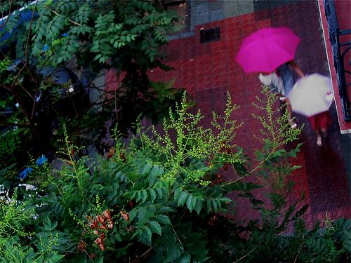 Día de paraguas by JoseAngelGarciaLanda