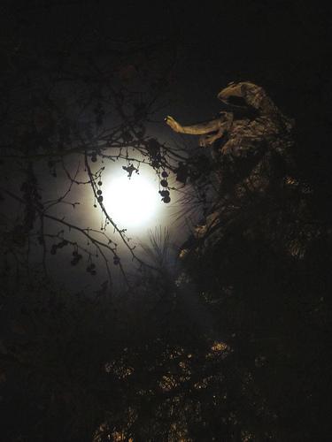 Sube la Luna by JoseAngelGarciaLanda