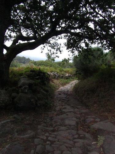 La vieja calzada by JoseAngelGarciaLanda