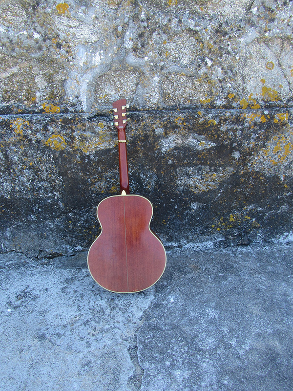 Mi guitarra, Anonymous